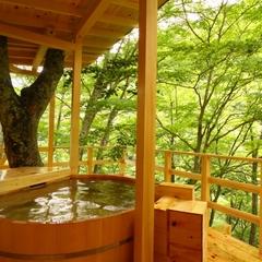 【一泊朝食】 絶景!風景館名物の仙人岩風呂と貸切露天風呂でのんびりと