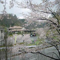 ☆春のお祝い応援プラン☆(夕部屋食)