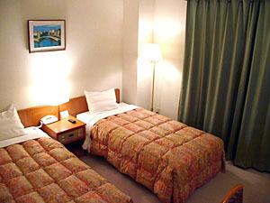 別棟 別館庭園ホテル ツインルームをシングルユース