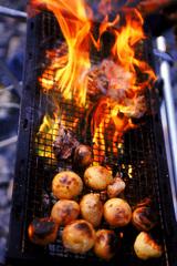 春夏秋冬BBQ♪ 楽しいバーベキュー付きプラン