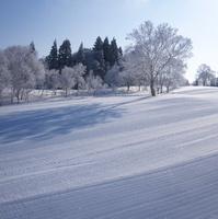 【冬季限定】野沢温泉スキー場と源泉かけ流し温泉満喫プラン 3/31迄《1泊夕食・朝食付き》