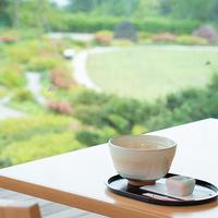 【ズラ得】絶景「三保の松原」◆アーリーサマー&レイトサマーで夏休みでもお得に旅行