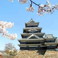 【松本城入場券付】●地元食材を使った旬会席 1泊2食!●『華咲き誇る幻想的な名城!』を観に松本へ♪