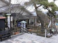 ◆【割引チケット付】悠久の歴史を現代に伝える伊香保温泉・名所旧跡巡り1泊2食付きバイキング
