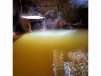 【楽天スーパーSALE】5%OFF!八ヶ岳高原ライフ♪源泉かけ流し貸切温泉でゆっくり♪朝食付き