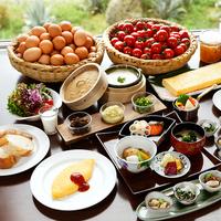 【1日2組限定!】バギーライド体験付きプラン<朝食付き>