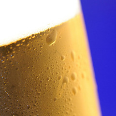 【早期予約がお得】3週間前までのご予約で嬉しい特典★暑さ吹き飛べ!夕食時にビール付♪