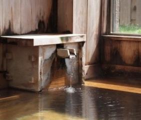 檜風呂の宿 星の湯旅館
