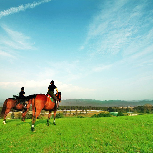 【アクティビティ体験シリーズ乗馬編】ナチュラルフレンチフルコースと自社ファーム翌日乗馬体験ツアー