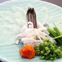 臼杵のフグと新鮮魚介を贅沢にご提供!フグと地魚コース①<2食付き>