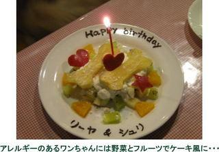 【アッパレしず旅】1日1組さま限定◆ワンちゃんの記念日プラン◆手作りのケーキ+記念写真付!!