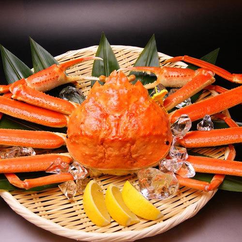 【越前蟹と和懐石】本物の証!タグ付き蟹を丸ごと一杯★季節の懐石料理&本場福井のタグ付き姿蟹♪