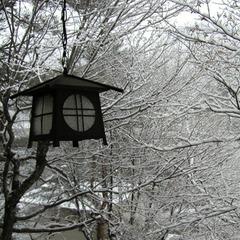 【東京駅⇔四万温泉/往復バス付】乗り換え無しで冬でも安心!らくらくプラン♪