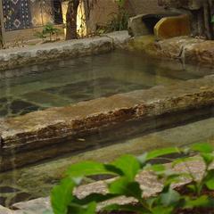 【 一人旅 】たまの休みはご自身へのご褒美旅行へ。<客室露天風呂完備&個室食>