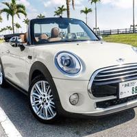 【MINI COOPER×プライベートプール付ホテル】ラグジュアリー旅【夕朝食付】