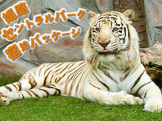 【姫路セントラルパーク1日入園チケットつき】 〜サファリで!遊園地で!一日中遊んじゃおう♪〜