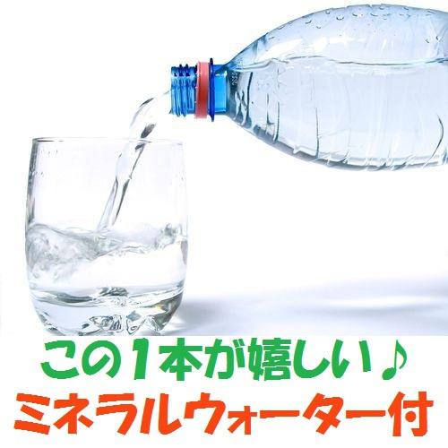 ◆【ミネラルウォーター付】水分補給に!★駐車場無料!≪おにぎり朝食付≫