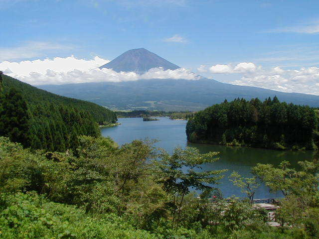 新緑の富士山麓と田貫湖を望むリラックスプラン 売店・ラウンジ割引券&マッサージ1回無料メダル付