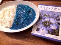 【SNS映えする青いカレー!?】ネモフィラカレーのお土産付プラン!(朝食無料サービス)