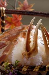 <仲買直営> 地物タグ付きブランド蟹懐石料理 【大サイズお一人様1杯使用】