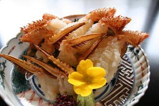 地物毛蟹と厳選食材 〜北陸の毛蟹を一度ご賞味下さい〜