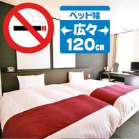 ◇禁煙ツイン(ベッド幅120cm×2台)