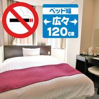◇禁煙シングル(ベッド幅120cm)