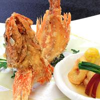 【期間限定】ここでしか味わえない深海魚料理美味づくし!