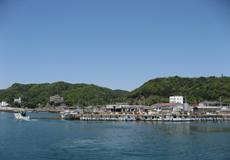 ◆板長おすすめ◆海の幸味くらべプラン