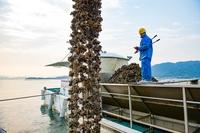 【季節到来!広島牡蠣を味わう】かき小屋で食べる《焼きがき食べ放題付》!1泊朝食付プラン!