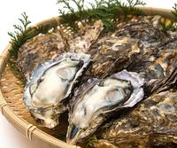 ★期間限定★【ひろしまグルメ】広島冬の味覚♪牡蠣づくしの特選会席プラン