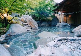 【超特割!2食付】平日限定〜癒しの温泉旅プラン〜アルカリ性単純温泉の泉質は美肌効果、疲労回復に最適