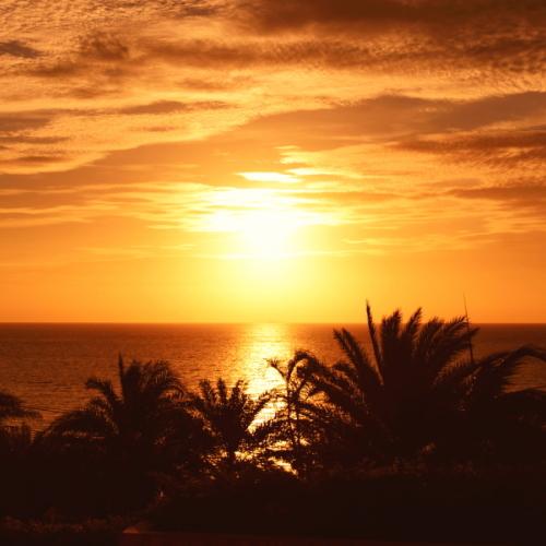 【楽パックSALE】彩りの朝食プレート付〜全室Ocean View〜美しい夕陽に染まるカフーステイ