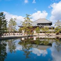 夏休みの自由研究は奈良の歴史を題材にいかが◆お盆は家族で旅館◆小学3年生まで半額!≪夕食はお部屋食≫