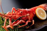 とれたて厳選食材!料理長おまかせ会席「花しるべ」伊勢海老の残酷焼きか鮑の陶板焼きが選べるコース