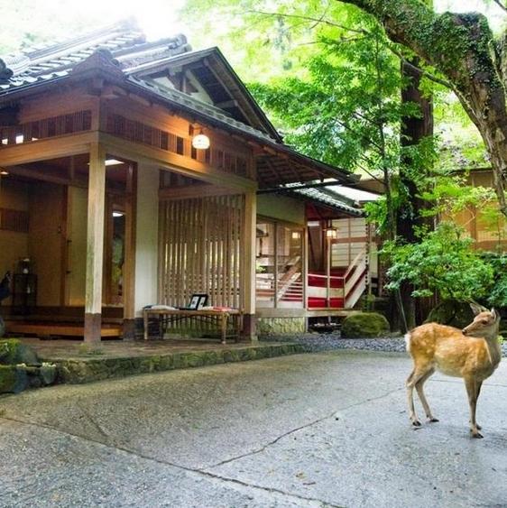Nara Tsukihitei Ryokan Nara Tsukihitei Ryokan
