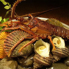 ◆鯛しゃぶ&新鮮貝類のさざれ焼き◆得々♪美味しい食事に満足♪美肌に◎の人工温泉も人気!