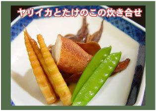【注目!◎◎】地元の海鮮(天然)素材をもちいた朝夕2食付プラン<おまかせ和室>