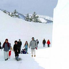 家族で圧倒的スケールの自然の絶景が楽しめる!春休みにお子様と10mの雪壁の大回廊を歩きませんか?