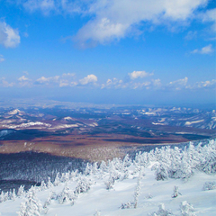 【インスタスキー♪】スキーを楽しみながら清らかなコントラストを写真に収めませんか?【ツアー1日分付】