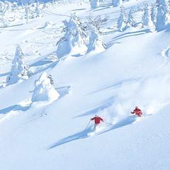 【ロープウェー片道券付き】日本屈指のパウダースノーを楽しみませんか?スキーヤーおすすめプラン♪