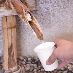 【旬刺身盛会席】朝獲れ!新鮮な鳥取の海の幸を堪能♪<部屋食>