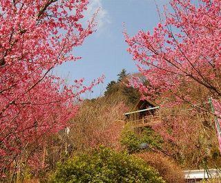 【自然の中で過ごす春休みプラン♪】(期間:3月20日〜3月31日)