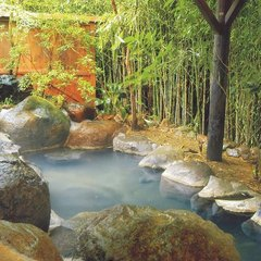 【スタンダードプラン】当館人気No,1 静寂な森で掛け流しの湯と四季替わりの会席料理を愉しむ休日を…