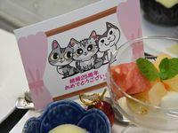 【ファミリー】【猫ちゃん】大好きあつまれ!猫博チケット付きプラン