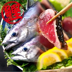 カツオ祭りだ!ワッショイ!カツオ満腹会席(初ガツオ編)<藁焼きタタキ+兜焼き+すき身丼付き>