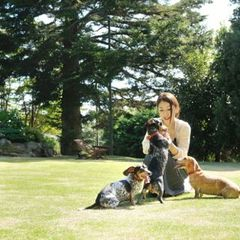 愛犬と一緒にマタ旅プラン(マタニティープラン)