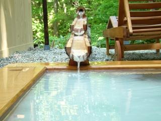 【期間限定】 大露天風呂入浴券付 蔵王の春を楽しもう! 温泉♪山菜♪山形三元豚♪ 今だけの特典付P