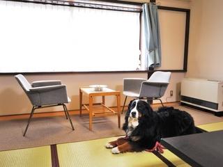 ペットと一緒に『畳』のお部屋3階 《ペット館和室》