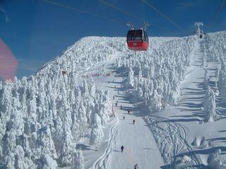 【現金特価】今シーズンもいよいよラスト!! エコ&リフト1日券付で蔵王で滑り収め!春スキープラン